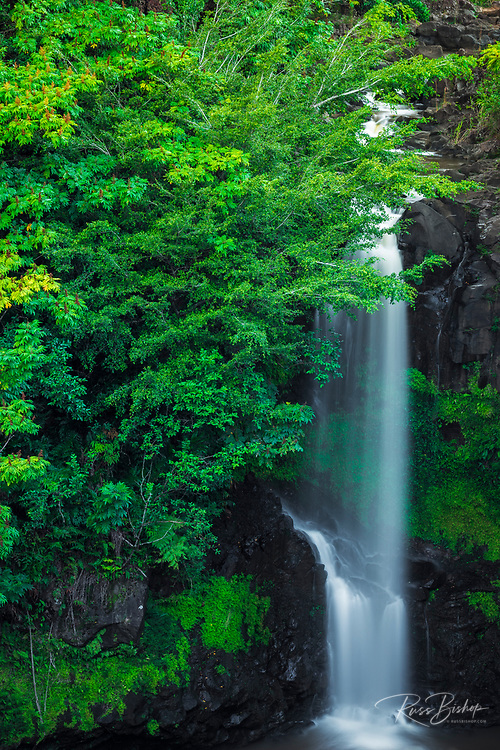 Waterfall on the Hamakua Coast, The Big Island, Hawaii USA