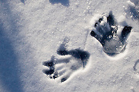 Two children's handprints in the snow