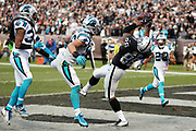 Carolina Panthers free safety Tre Boston (33), Panthers outside linebacker A.J. Klein (56), and Panthers strong safety Kurt Coleman (20) look on in futility as Oakland Raiders tight end Clive Walford (88) falls backwards and catches a 12 yard touchdown pass that cuts the Panthers fourth quarter lead to 32-30 prior to the outcome of a two point conversion attempt during the 2016 NFL week 12 regular season football game against the Carolina Panthers on Sunday, Nov. 27, 2016 in Oakland, Calif. The Raiders won the game 35-32. (©Paul Anthony Spinelli)
