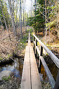 Evening falls over the footbridge over Benson Creek at Daisy Farm Campground, Isle Royale National Park, Michigan, USA