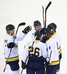 31.08.2013, Albert Schultz Eishalle, Wien, AUT, European Trophy, UPC Vienna Capitals vs HV71, im Bild Torjubel Andreas Jaemtin, (HV71, #91), Riley Holzapfel, (HV71, #26), William Karlsson, (HV71, #71), Marcus Nilson, (HV71, #4) und Oscar Fantenberg, (HV71, #6)  // during the European Trophy Icehockey match betweeen UPC Vienna Capitals (AUT) vs HV71 (SWE) at the Albert Schultz Eishalle, Vienna, Austria on 2013/08/31. EXPA Pictures © 2013, PhotoCredit: EXPA/ Thomas Haumer