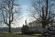© Licensed to London News Pictures. 22/03/2015. Richmond, UK. Children climb a fallen tree.  People enjoy the late afternoon sunshine in Richmond Park, Surrey, today 22nd March 2015. Photo credit : Stephen Simpson/LNP