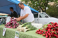 Bill Rieckhoff, of Morgan Creek Farm & Market, stacks red candy onions at the Downtown Farmers' Market in Cedar Rapids on Saturday morning, June 2, 2012. There were 244 vendors who participated in the first market of the year. (Stephen Mally/Freelance)