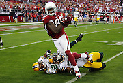 Arizona Cardinals wide receiver Early Doucet (80) leaves a trail of defenders on the ground after catching a third quarter pass inside the Green Bay Packers red zone during the NFC Wild Card Game against the Green Bay Packers, January 10, 2010 in Glendale, Arizona. The Cardinals won the game 51-45 in overtime. ©Paul Anthony Spinelli