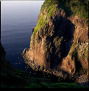 Cliffs over the Sea of Okhotsk near the Furepe Waterfall and Cape Chikapoi, Shiretoko National Park, an UNESCO World Heritage Site.