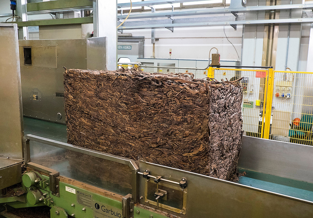 LUCCA, ITALY - MARCH 20:  A tobacco bale enters the factory on the conveyor belt on March 20, 2014 in Lucca, Italy. The Toscano cigar is the original Italian cigar, manufactured in Lucca and  founded in 1818 by the Grand Duke of Tuscany. The cigar is made with top fermented Kentucky tobacc with some of the top types are still rolled by hand.(Photo by Marco Secchi/Getty Images)