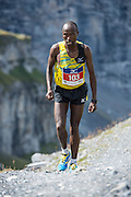 Jungfrau-Marathon 2013