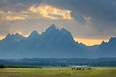 Portfolio Rocky Mountain States