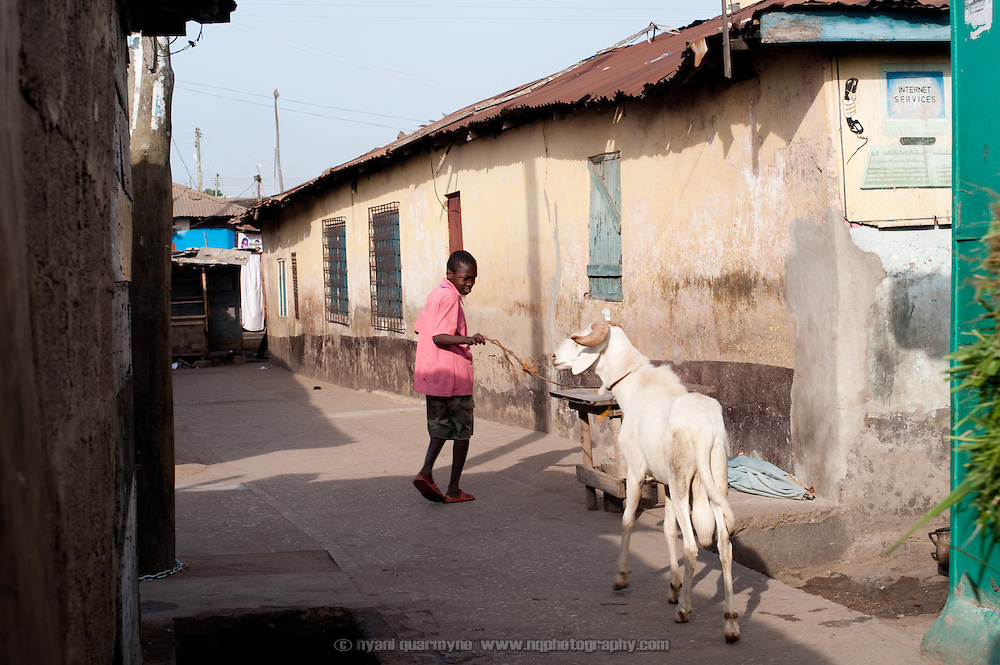 A boy leads  goat along an alley in Nima, a densely populated area of Accra, Ghana.
