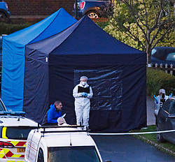 ©Licensed to London News Pictures 22/12/2019. <br /> Crawley Down ,UK. Police forensic officers working at the scene. Two people are dead and a third is fighting for life after a knife attack on a housing estate in Crawley Down, West Sussex Photo credit: Grant Falvey/LNP