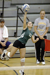 27 October 2006: Ashley Reed delivers on a running serve. The Bears won the match 3 games to 1. The match between the Washington University Bears and the Illinois Wesleyan Titans took place at Shirk Center on the IWU campus in Bloomington Illinois.<br />