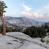 View of Half Dome and the Yosemite Valley from Olmstead Point, Yosemite National Park, California
