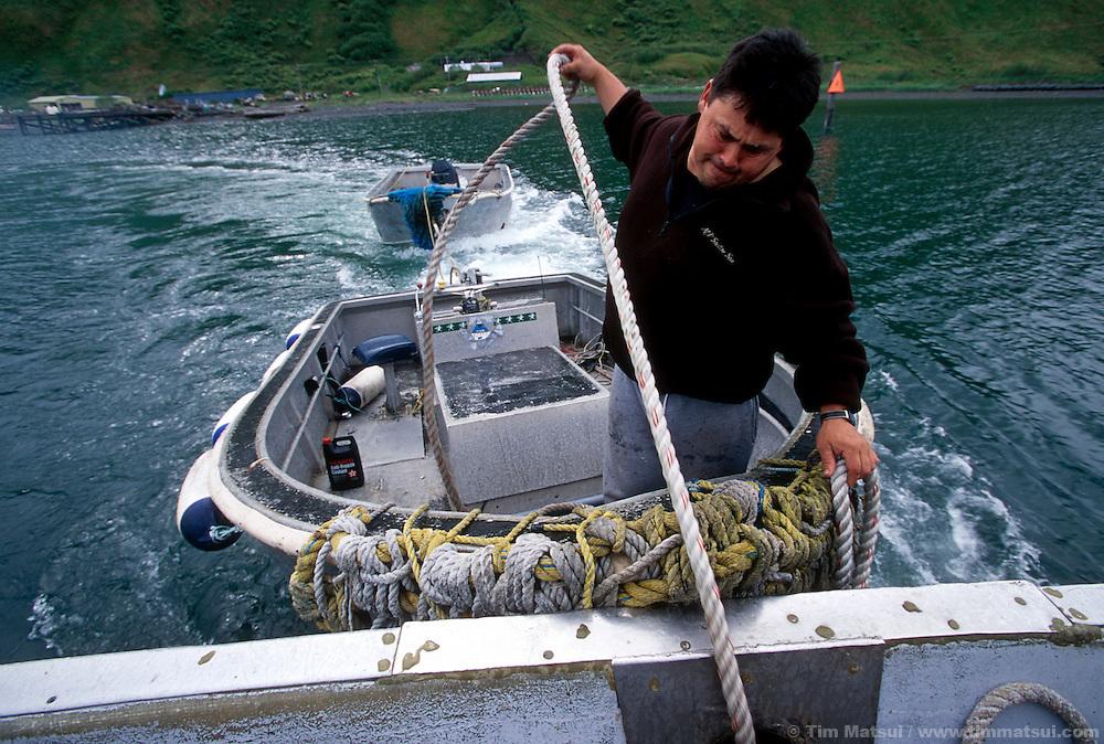 Getting underway in Old Harbor, Alaska, on the way to the salmon fishing grounds. Kodiak, Alaska.