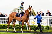 """Johni Boxit ridden by Trevor Whelan and trained by Brian Barr in the Free Tips From """"Sandstorm"""" At Valuerater.Co.Uk Handicap race.  - Mandatory by-line: Ryan Hiscott/JMP - 01/05/2019 - HORSE RACING - Bath Racecourse - Bath, England - Wednesday 1 May 2019 Race Meeting"""