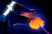 A woman's rope-bound feet being tickled by a glowing feathery wand.Black light