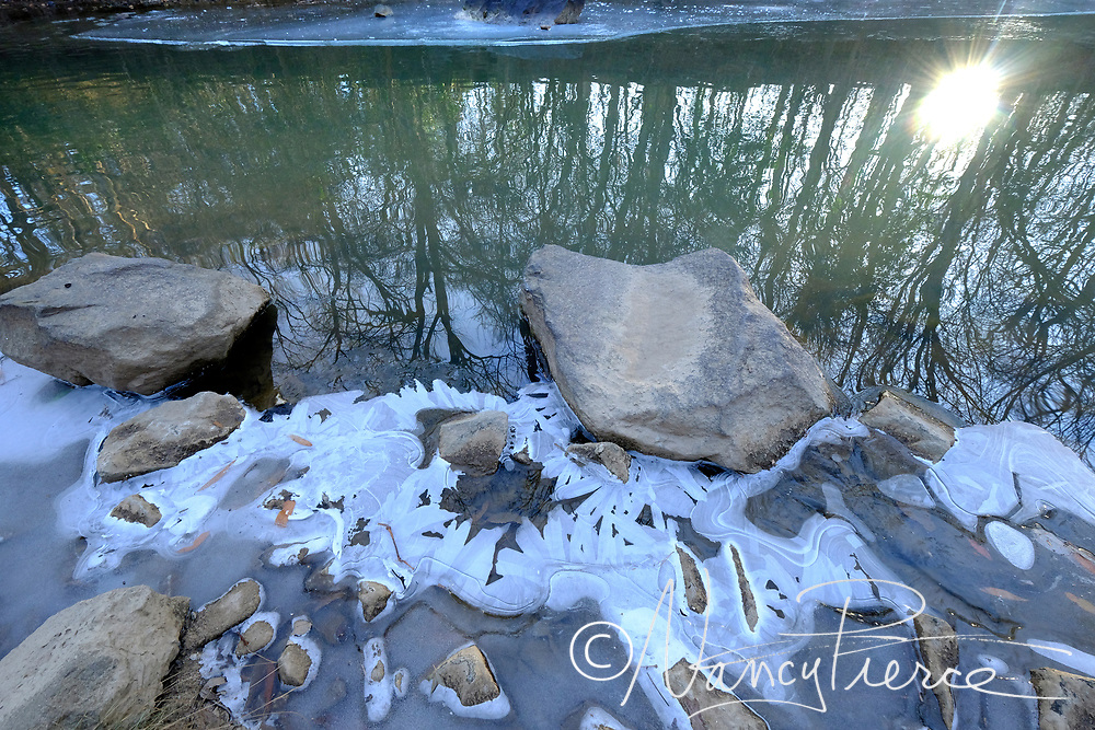 Ice on Little Sugar Creek at Freedom Park