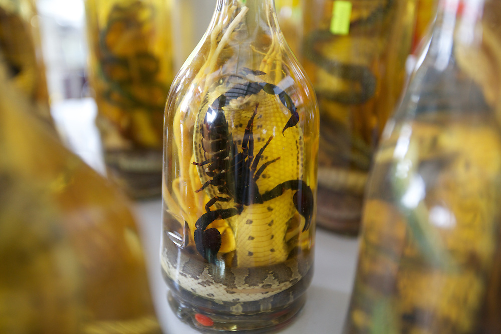 Cobra with a scorpion in it's jaw, preserved in a bottle, sold as a souvenir at a roadside tourist stop on the way to Ho Chi Minh City.