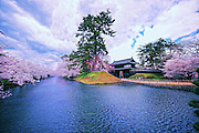 Hirosaki Castle Japan.This is the outer moat to the main entrance. This year spring was early and so, not many tourists. Northern Honshu, Japan. Over 3,000 cherry trees come into bloom from mid April to early May.