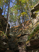 Fall colors are on vivid display at Parfrey's Glen State Natural Area, near Baraboo, Sauk County, Wisconsin.