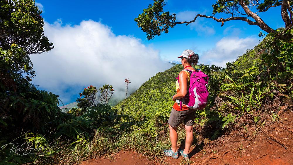 Hiker on the Pihea Trail overlooking the Kalalau Valley, Kokee State Park, Kauai, Hawaii USA