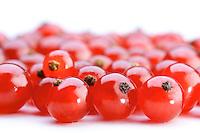 Studio shot of red currants