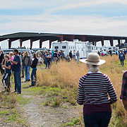 Hundreds of sightseers, family and friends waited anxiously for the return of the Cow Hunters on a six day trip during the Great Florida Cattle Drive '16 ends.<br />