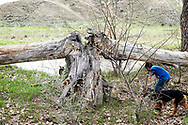 Henry Real Bird, grandson Hank, playing, Little Bighorn River, Medicine Tail Coulee, site of Battle of the Little Bighorn, Crow Indian Reservation, Montana