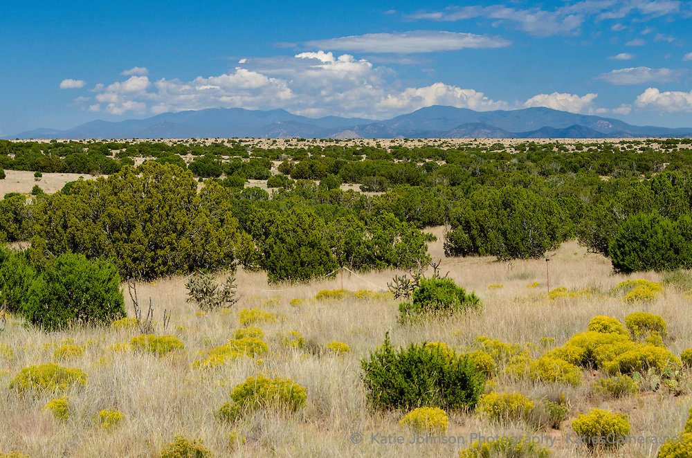 Land View Photography Santa Fe New Mexico Katie Johnson Photography Katiescamera.net