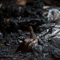 26/01/2013. Konna, Mali. Visite de la presse à Konna, la ville occupée par les islamistes située le plus au sud au Mali. Elle est à 70 kilomètres au nord de Sevaré, point stratégique pour son aéroport. Série de panneaux publicitaires à l'entrée de la ville de Konna. Le corps d'un homme supposé dijihadiste gît dans une maison, les riverains gênés par l'odeur l'ont brûlé après avoir rencontré le cadavre il y a quelques jours. ©Sylvain Cherkaoui