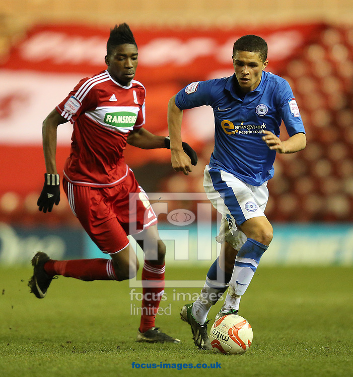 Picture by Paul Gaythorpe/Focus Images Ltd +447771 871632.02/04/2013.Sammy Ameobi of Middlesbrough and Kane Ferdinand of Peterborough United during the npower Championship match at the Riverside Stadium, Middlesbrough.