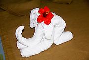 Hotel in Trinidad, Cuba Elephant shaped towels