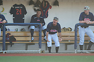 Ole Miss coach Mike Bianco argues a called third strike on Tanner Mathis vs. Vanderbilt at Oxford-University Stadium Stadium in Oxford, Miss. on Saturday, April 6, 2013. Vanderbilt won 2-1.