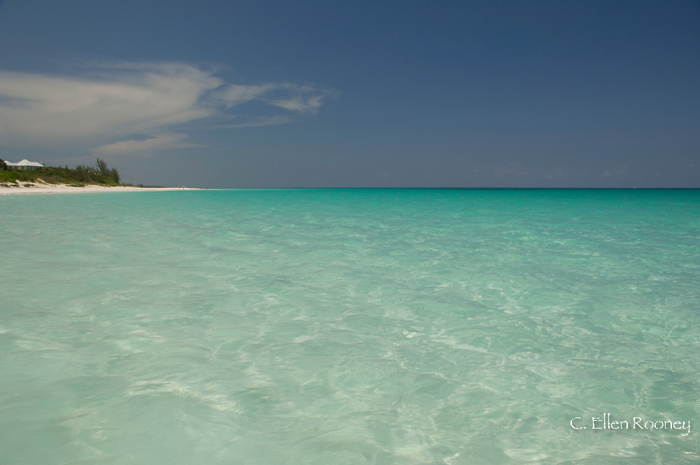 Emerald seas at Pink Sands Beach, Harbour Island, The Bahamas