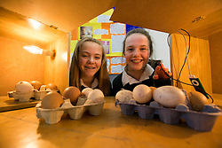 Sarah Whyms (13), Malahide and Selina Quilligan (13), Sutton pupils of Santa Sabina School, Sutton are pictured at SciFest@ITB with theior project 'Does Music Affect The Hatching Pattern of Eggs'. Picture Andres Poveda