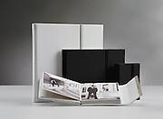 Palazzo Exclusieve Albums, Exclusive Albums