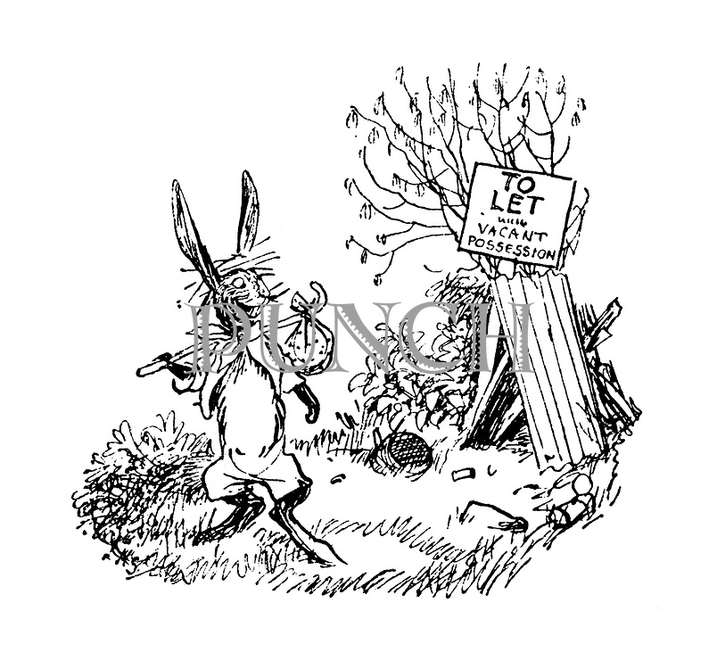 "(A hare leaves his shack in a field which has a sign reading ""To let vacant possession"" resting against it)"
