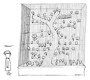 """""""Miaow!"""" (cartoon showing a man making cat sound to see the reaction from caged birds)"""