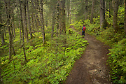 Hiker on Lost Lake Trail, Chugach National Forest, Alaska