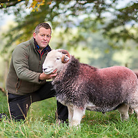 16/10/15 Matterdale , Cumbria - Shepherd James Rebanks author of The Shepherds Life with his Herdwick and Swaledale sheep