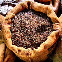 Whole Black Pepper in Burlap Gunny Sack in Cochin, India<br /> This burlap gunny sack of whole black pepper or peppercorns has a heritage in India that dates back to 2 BCE when it was called &ldquo;black gold&rdquo; and used as currency.  It was a heavily-traded and much-prized spice by the ancient Greeks and Romans.  Today, pepper represents 20% of the world&rsquo;s spice trade and the International Pepper Exchange is located in Cochin or Kochi, India.