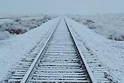 Railroad Tracks, Bosque del Apache NWR, San Antonio, New Mexico