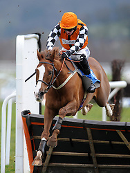 Race Winner May be Some time ridden by T J O'Brien jumps the last during the SIS Handicap Hurdle (Class 4) (4YO plus) - Photo mandatory by-line: Harry Trump/JMP - Mobile: 07966 386802 - 09/03/15 - SPORT - Equestrian - Horse Racing - Taunton Racing - Taunton Racecourse, Somerset, England.