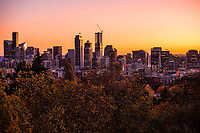 Seattle Skyline (Autumn Gold)