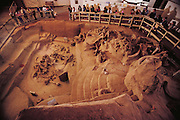 Fossil mammoth site. View of the largest collection of Columbian mammoth fossils (Mammuthus columbi) in the Western Hemisphere. Visitors receive a commentary while looking at excavated bones at the Hot Springs Mammoth Site in South Dakota, USA. Here, the fossilized skeletons of at least 43 mammoths lie, buried for 26,000 years. It is thought these animals became trapped in a large sinkhole when they came to drink water. Mammuthus columbi was a giant elephant-like mammal, some 4 meters in height, which roamed temperate parts of North America. It was an important later relative of the woolly mammoth of Europe and Siberia. This fossil site was discovered in 1974. 1992.