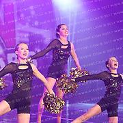 1034_Wolves Cheerleading - Rebelettes Pom