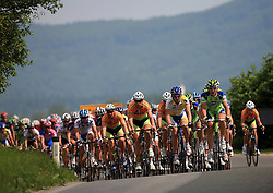 Riders in peloton during 1st stage of the 15th Tour de Slovenie from Ljubljana to Postojna (161 km) , on June 11,2008, Slovenia. (Photo by Vid Ponikvar / Sportal Images)/ Sportida)