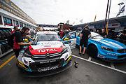 Tom CHILTON, Sebastien Loeb Racing, Citroën C-Elysée WTCC<br /> 64th Macau Grand Prix. 15-19.11.2017.<br /> Suncity Group Macau Guia Race - FIA WTCC<br /> Macau Copyright Free Image for editorial use only