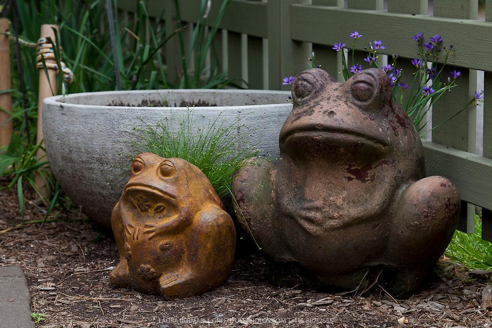 Flowers growing in ceramic frog planters.