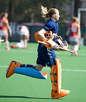 LAREN -  Hockey -   keeper Joyce Sombroek (Laren) speelt haar laatste wedstrijd en wordt in de rust gewisseld voor een vliegende keep,   . Hoofdklasse dames Laren-Oranje Rood (0-4). Oranje Rood plaatst zich voor Play Offs.   COPYRIGHT KOEN SUYK