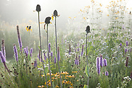 Tom Stuart Smith's Garden - England, Late Summer